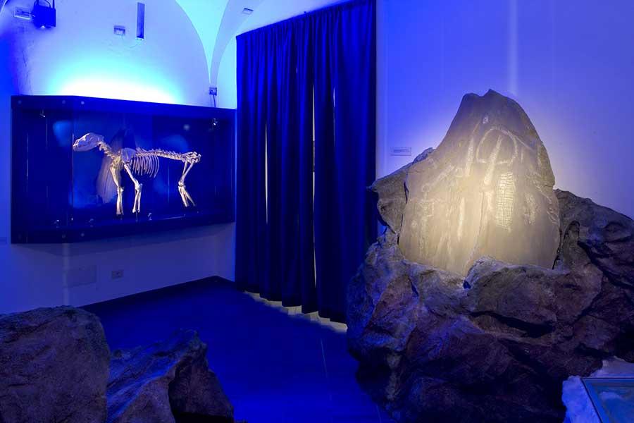 museo della monmtagna Torino Sacra di San Michele